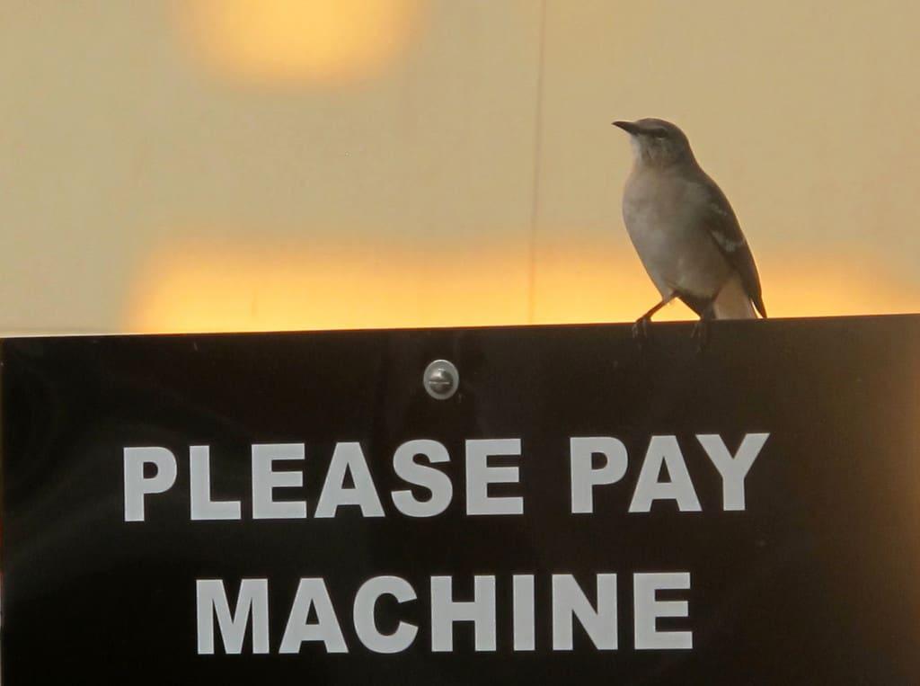 PayPal & Weltsparen Wakeup Moment für Banken