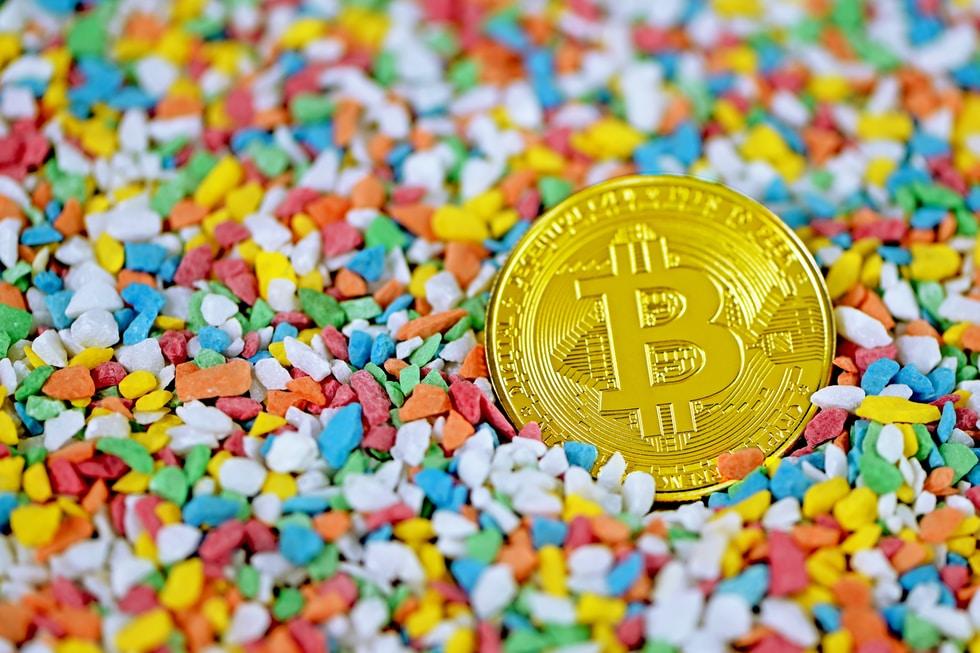 CBDC - Digitale Zentralbankwährungen in der Praxis