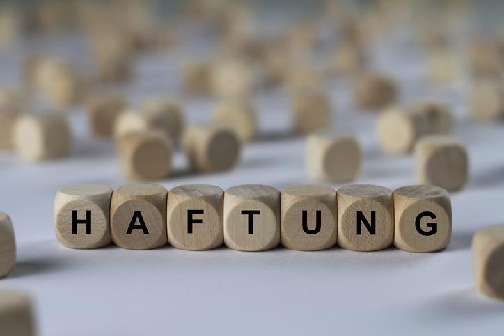 Bafin-Zulassung oder Haftungsdach - das ist hier die Frage...